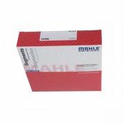 Segment Mahle XU10J4RS PSA côte Standard